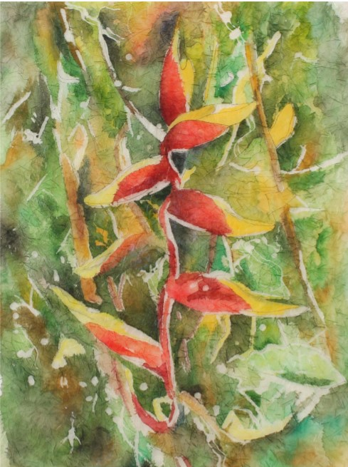Rosie Brown, Heliconia